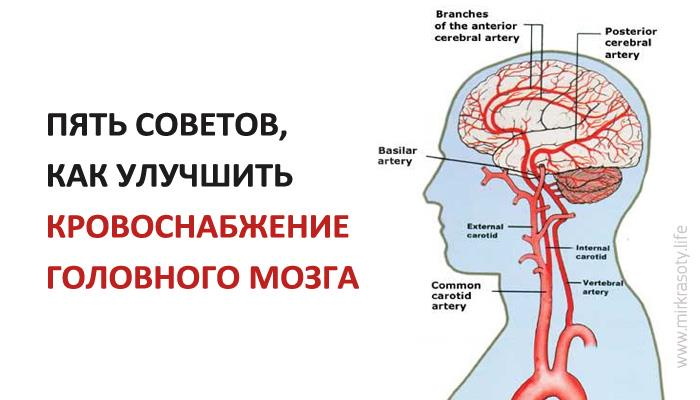 Улучшение кровоснабжения суставов санатории лечение суставов свердловская область